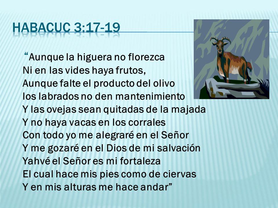 Habacuc 3:17-19
