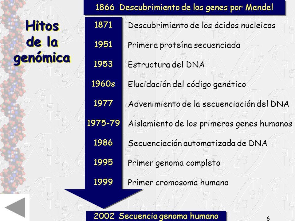 Hitos de la genómica 1866 Descubrimiento de los genes por Mendel 1871