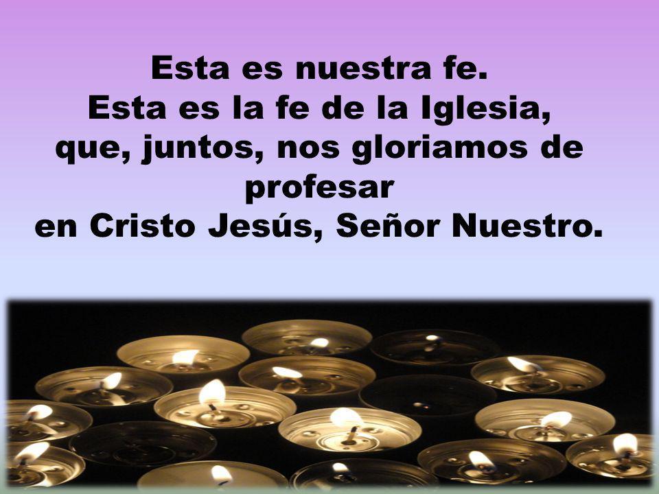 Esta es la fe de la Iglesia, que, juntos, nos gloriamos de profesar