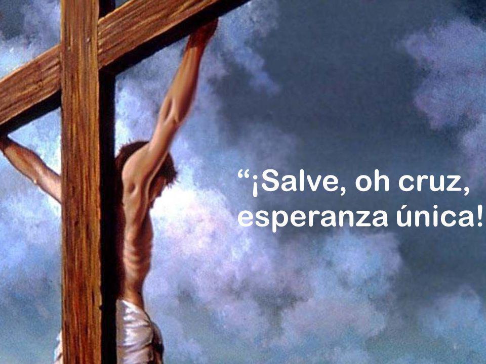 ¡Salve, oh cruz, esperanza única! .