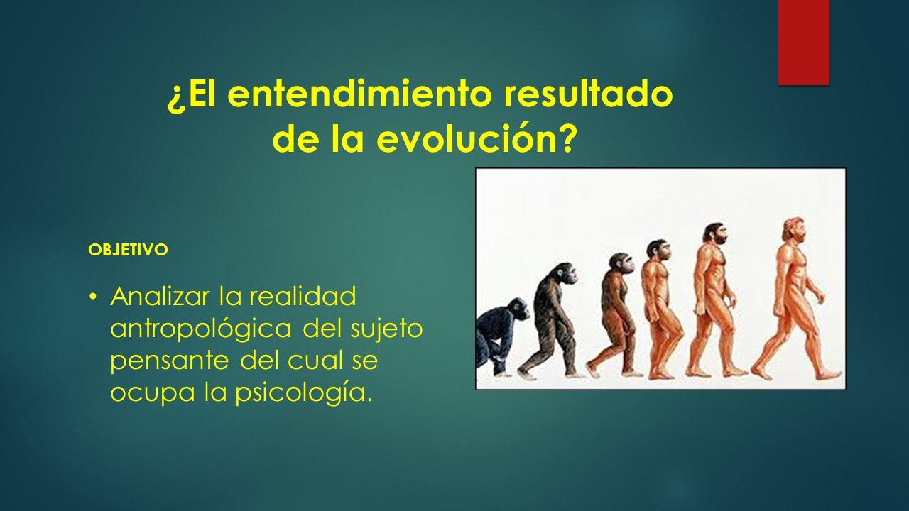 ¿El entendimiento resultado de la evolución