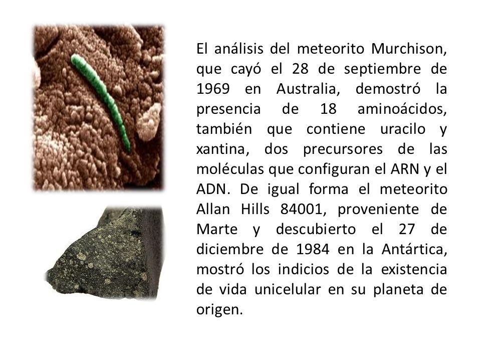 El análisis del meteorito Murchison, que cayó el 28 de septiembre de 1969 en Australia, demostró la presencia de 18 aminoácidos, también que contiene uracilo y xantina, dos precursores de las moléculas que configuran el ARN y el ADN.