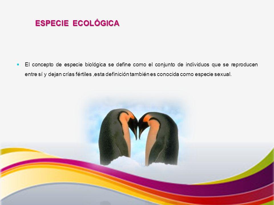 ESPECIE ECOLÓGICA