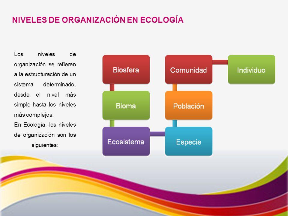 NIVELES DE ORGANIZACIÓN EN ECOLOGÍA