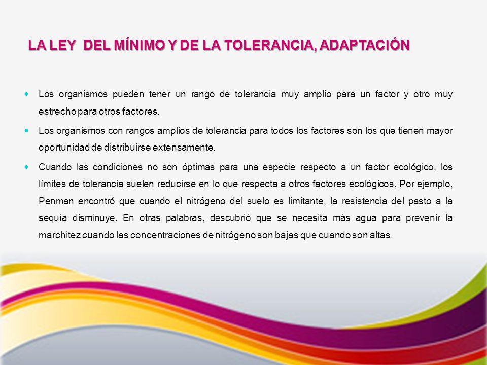 LA LEY DEL MÍNIMO Y DE LA TOLERANCIA, ADAPTACIÓN