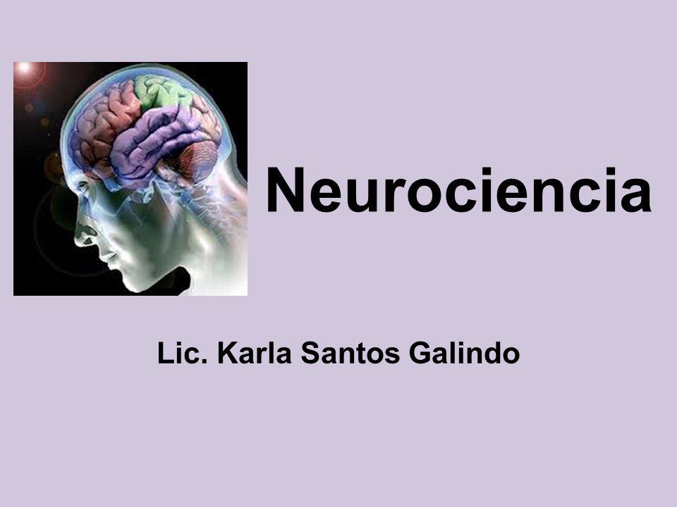 Lic. Karla Santos Galindo