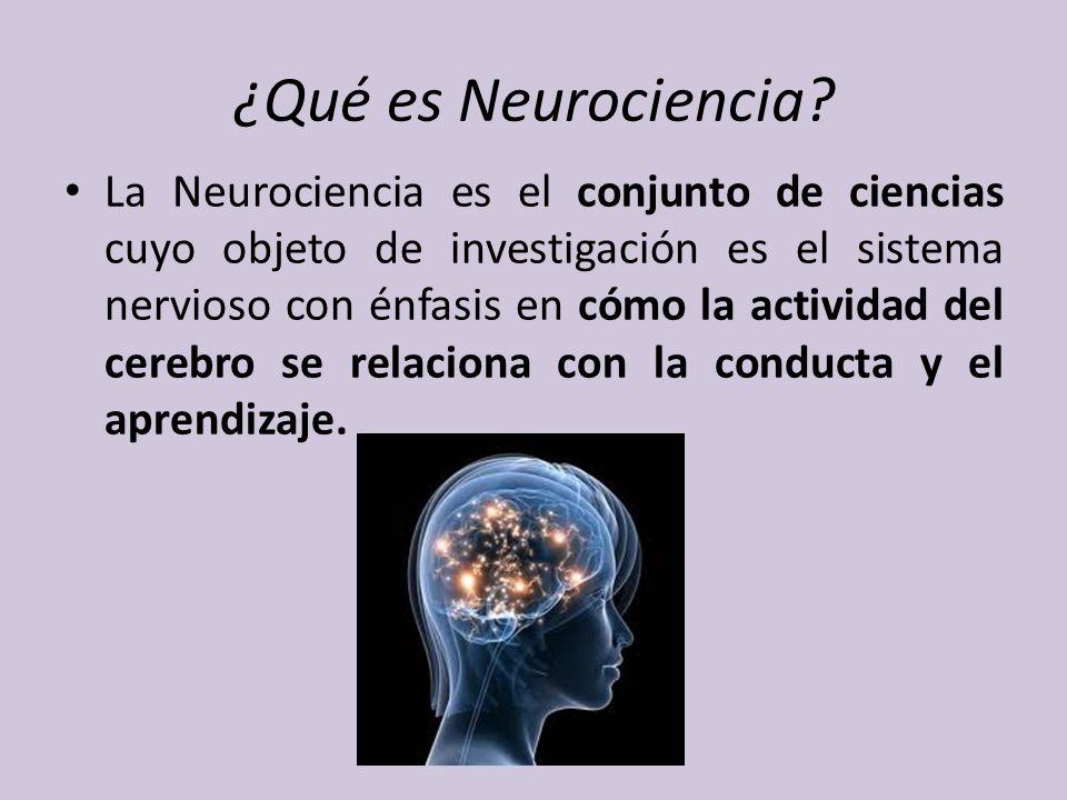¿Qué es Neurociencia