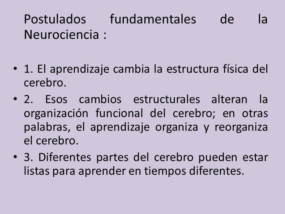Postulados fundamentales de la Neurociencia :
