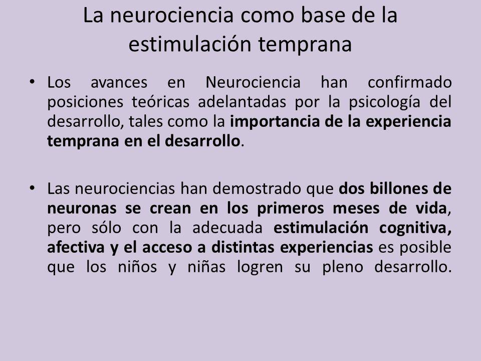 La neurociencia como base de la estimulación temprana