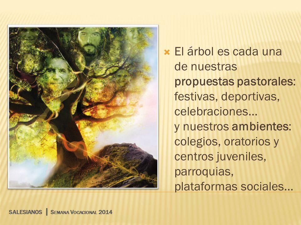 El árbol es cada una de nuestras propuestas pastorales: festivas, deportivas, celebraciones... y nuestros ambientes: colegios, oratorios y centros juveniles, parroquias, plataformas sociales...