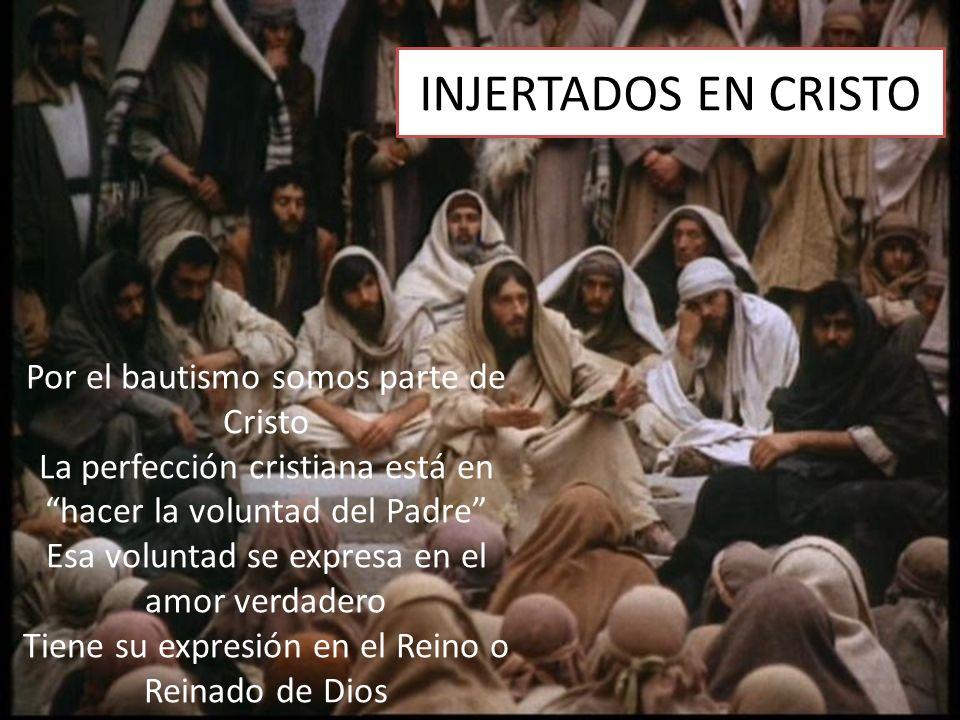 INJERTADOS EN CRISTO Por el bautismo somos parte de Cristo