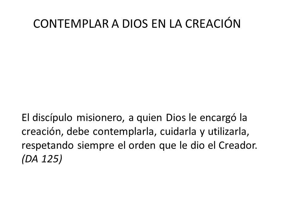 CONTEMPLAR A DIOS EN LA CREACIÓN
