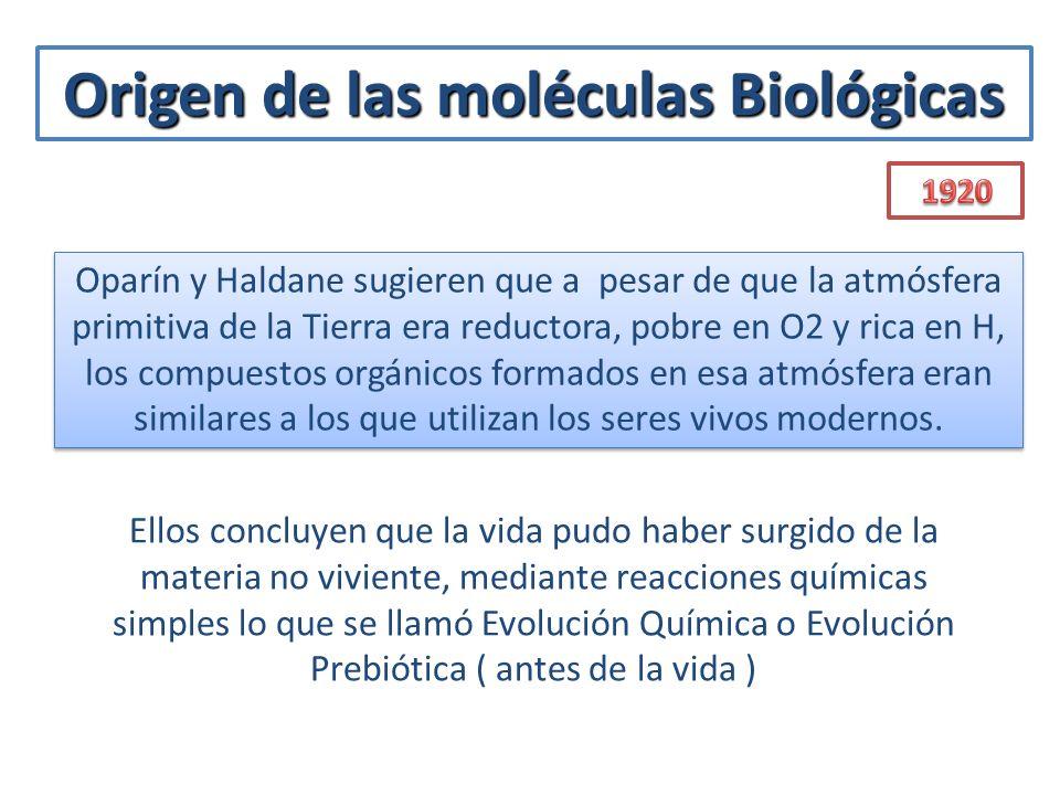 Origen de las moléculas Biológicas