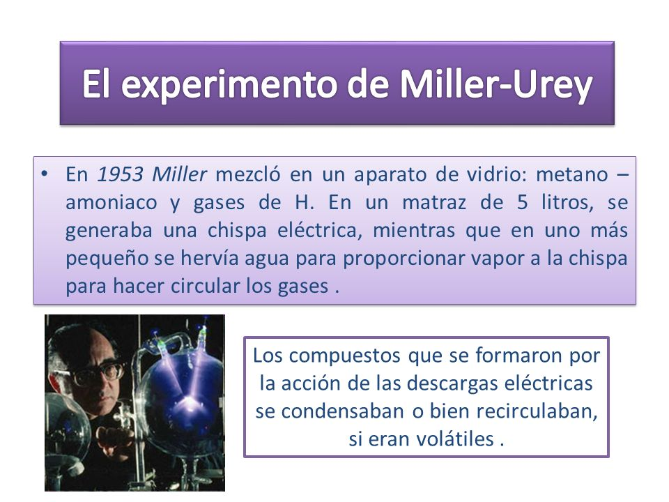 El experimento de Miller-Urey