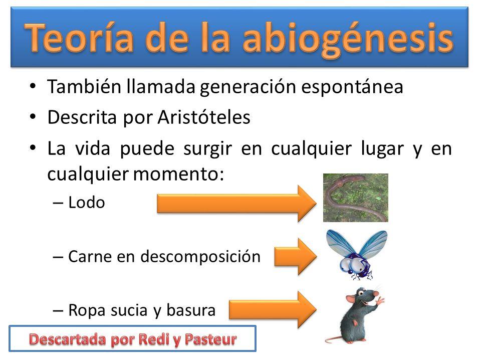 Teoría de la abiogénesis