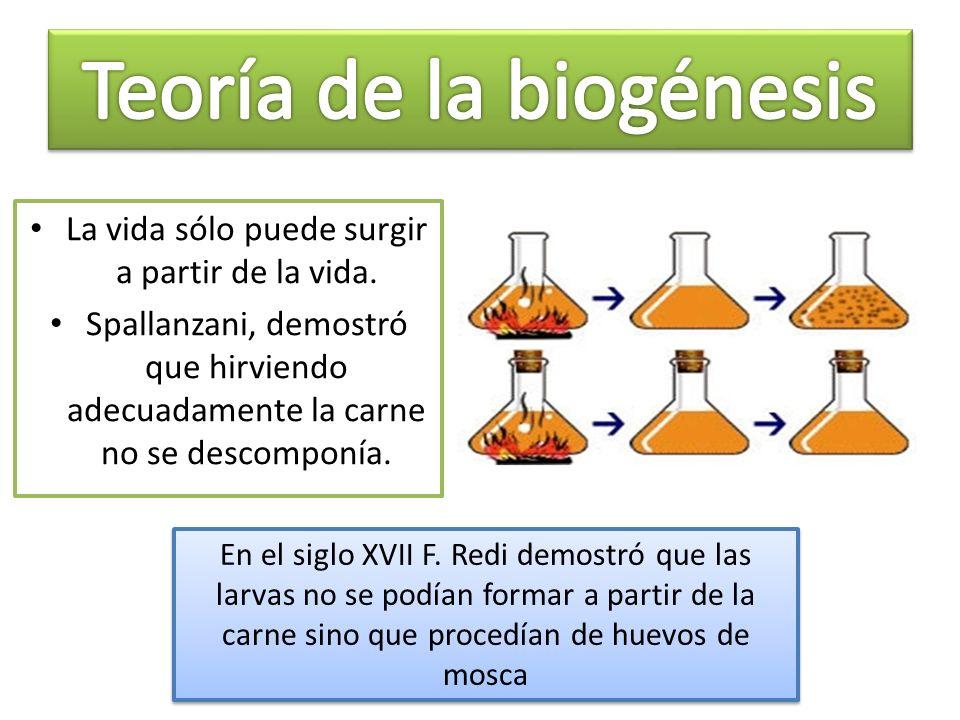 Teoría de la biogénesis