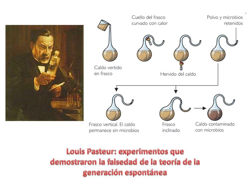 Louis Pasteur: experimentos que demostraron la falsedad de la teoría de la generación espontánea