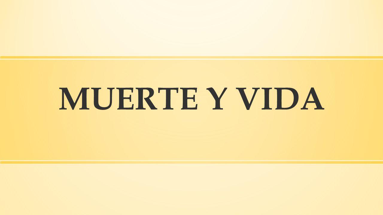 MUERTE Y VIDA