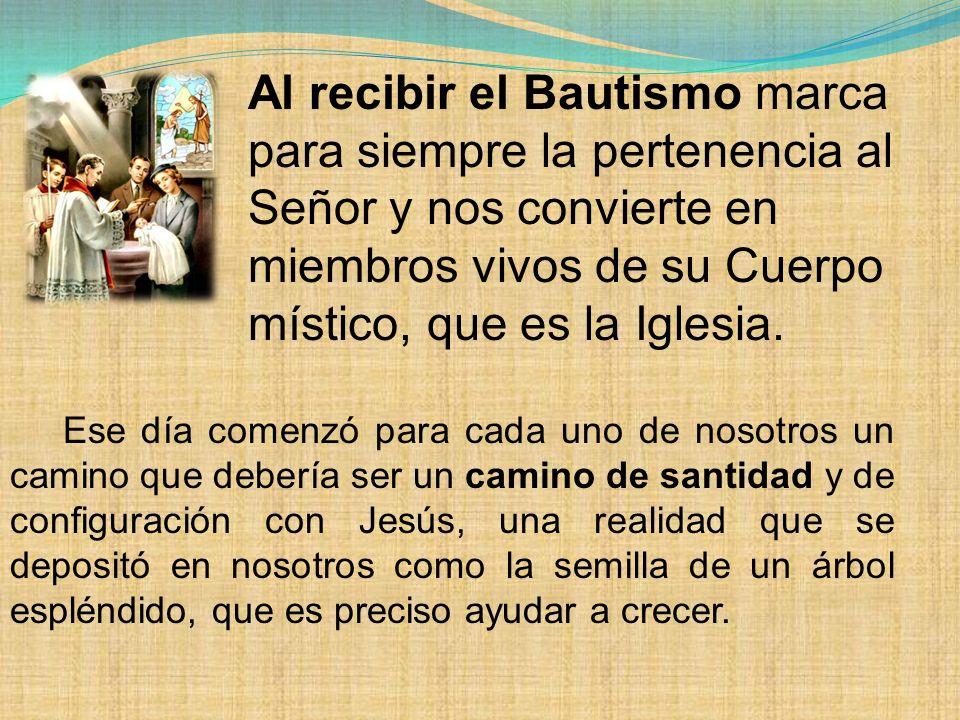 Al recibir el Bautismo marca para siempre la pertenencia al Señor y nos convierte en miembros vivos de su Cuerpo místico, que es la Iglesia.