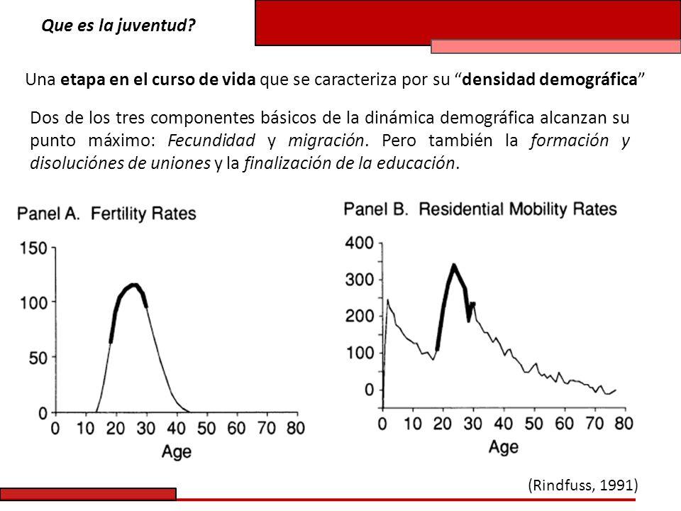 Que es la juventud Una etapa en el curso de vida que se caracteriza por su densidad demográfica