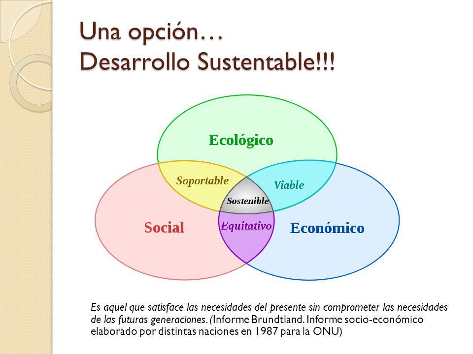 Una opción… Desarrollo Sustentable!!!