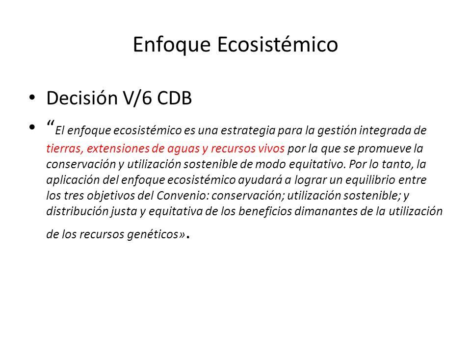 Enfoque Ecosistémico Decisión V/6 CDB