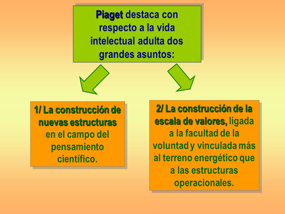 Piaget destaca con respecto a la vida intelectual adulta dos grandes asuntos:
