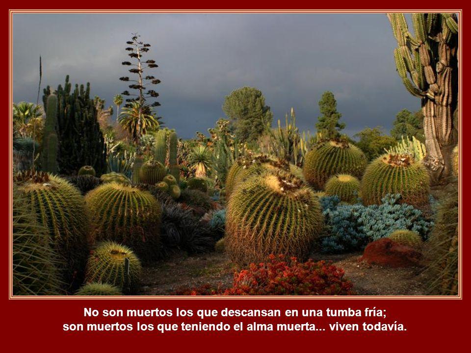 No son muertos los que descansan en una tumba fría; son muertos los que teniendo el alma muerta...