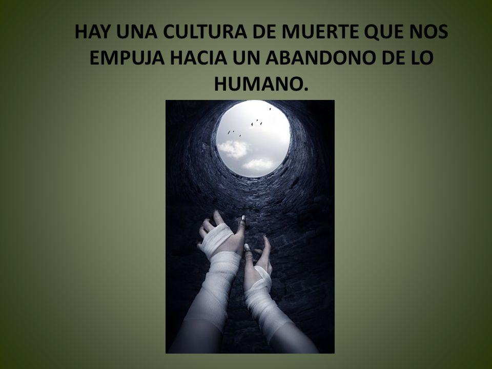 HAY UNA CULTURA DE MUERTE QUE NOS EMPUJA HACIA UN ABANDONO DE LO HUMANO.