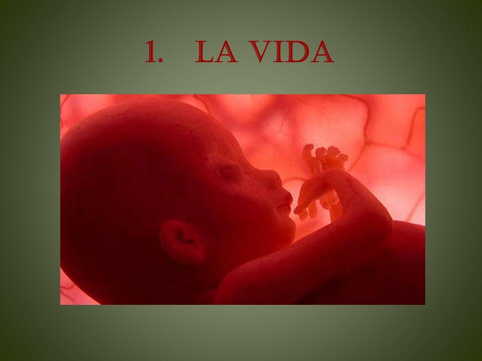 1. LA VIDA