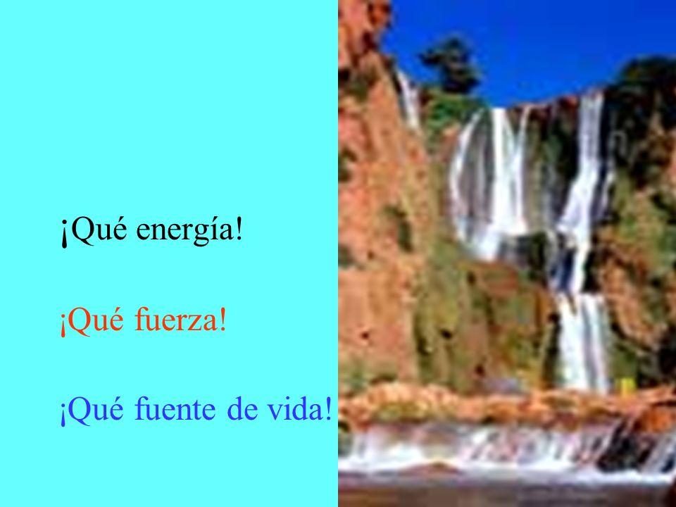 ¡Qué energía! ¡Qué fuerza! ¡Qué fuente de vida!