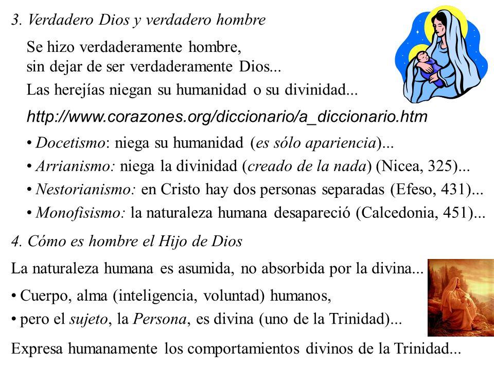 3. Verdadero Dios y verdadero hombre