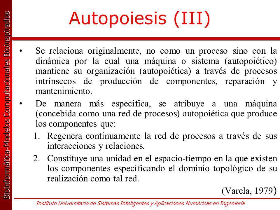 Autopoiesis (III)