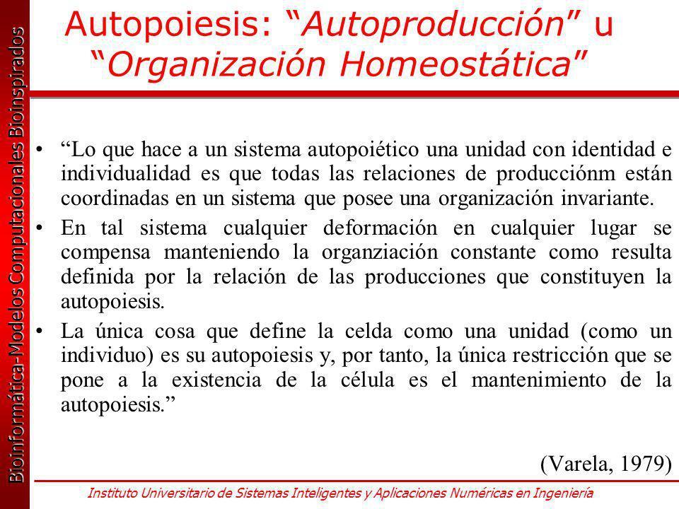 Autopoiesis: Autoproducción u Organización Homeostática