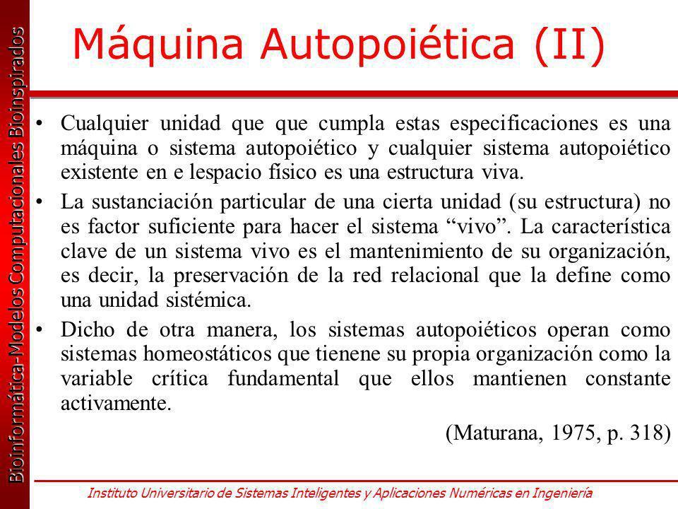 Máquina Autopoiética (II)