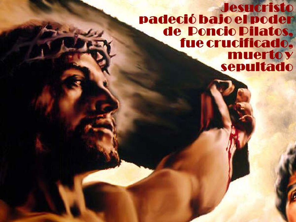 Jesucristo padeció bajo el poder de Poncio Pilatos, fue crucificado,