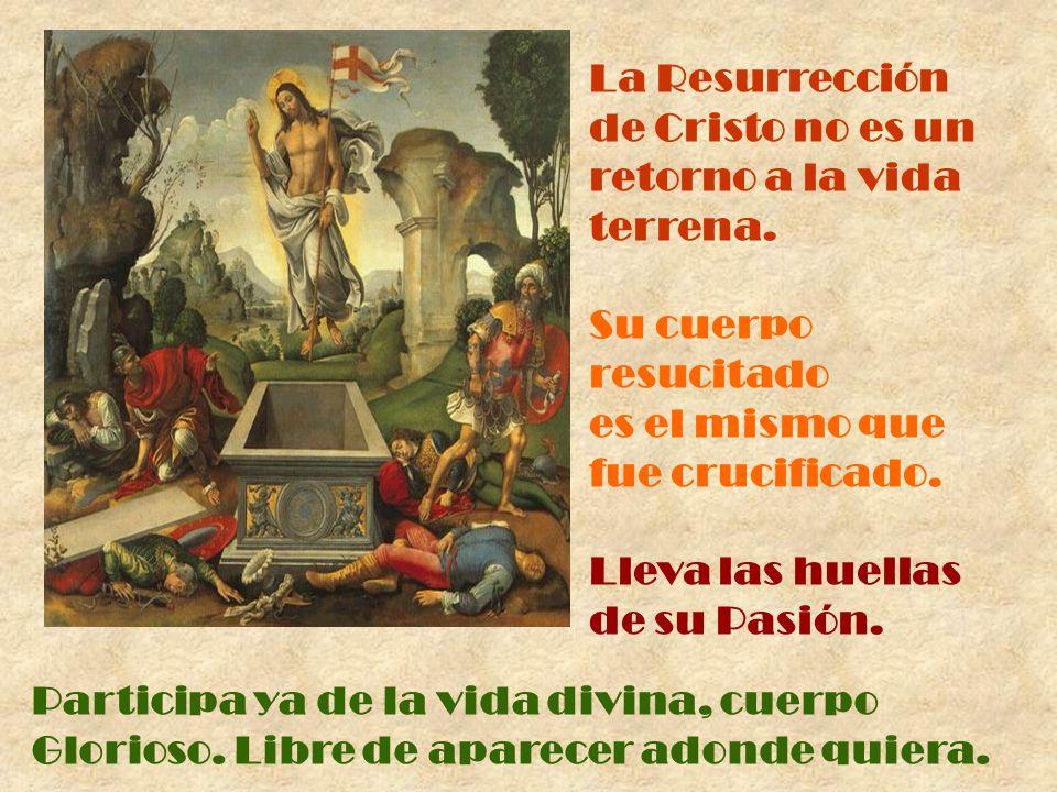 La Resurrección de Cristo no es un retorno a la vida terrena.