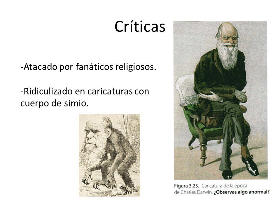 Críticas Atacado por fanáticos religiosos.