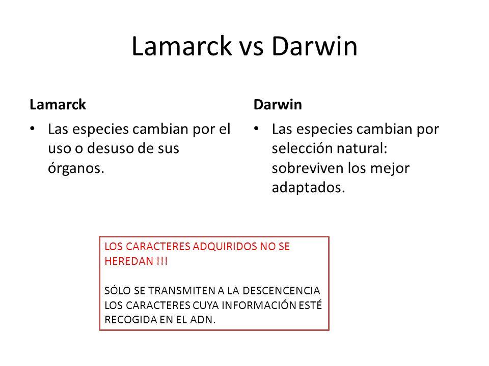 Lamarck vs Darwin Lamarck Darwin