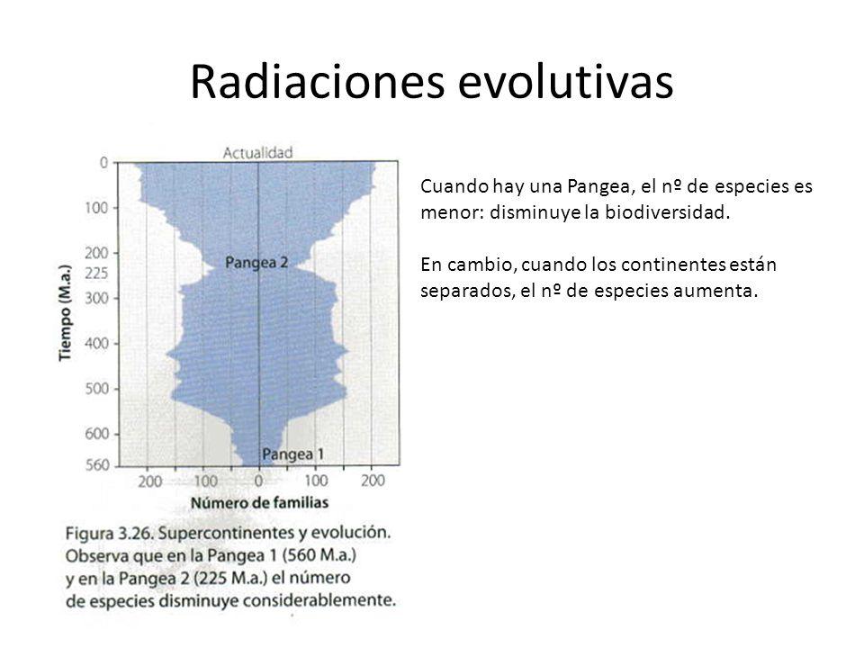 Radiaciones evolutivas