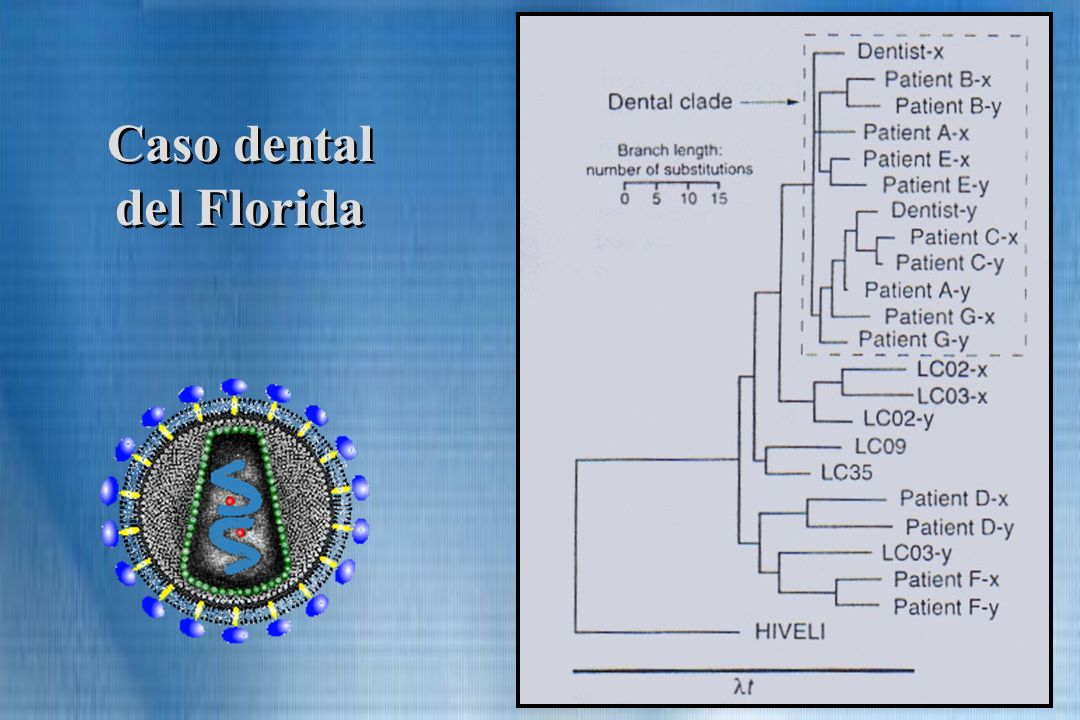Caso dental del Florida