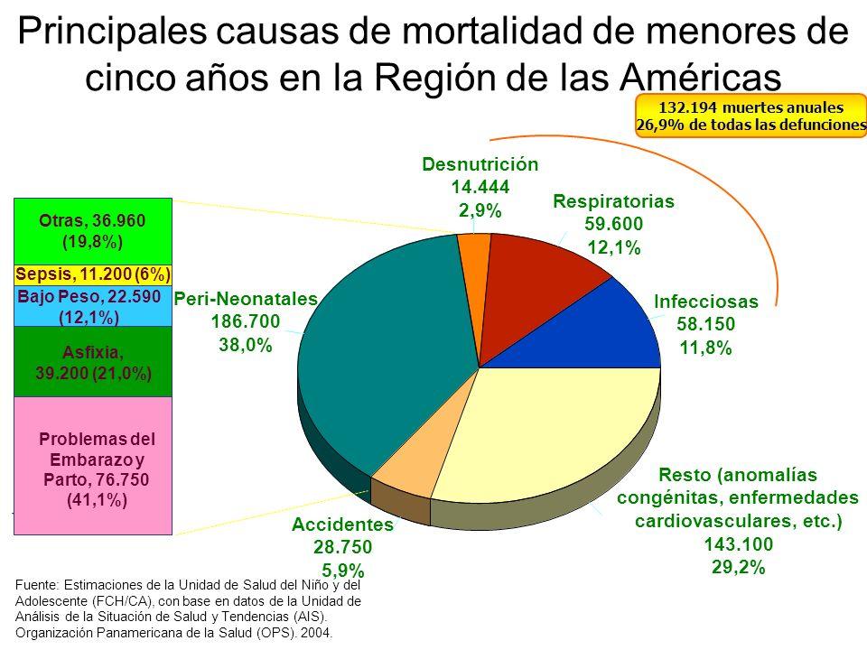 Principales causas de mortalidad de menores de cinco años en la Región de las Américas