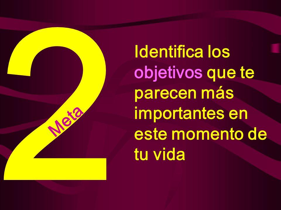 2 Identifica los objetivos que te parecen más importantes en este momento de tu vida Meta