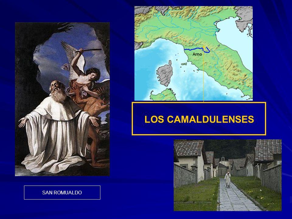 LOS CAMALDULENSES SAN ROMUALDO