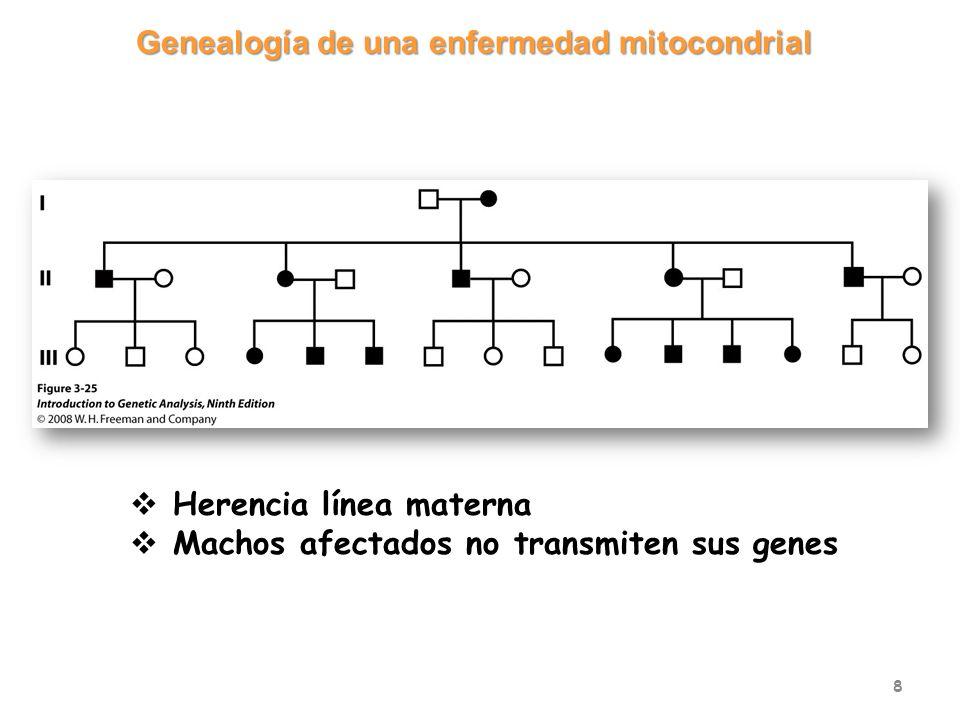 Genealogía de una enfermedad mitocondrial