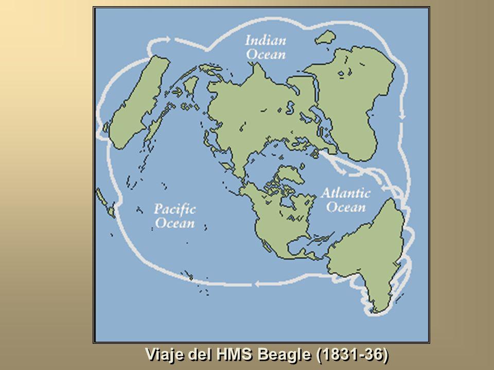 Viaje del HMS Beagle (1831-36)