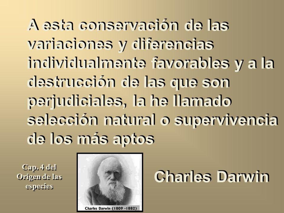 A esta conservación de las variaciones y diferencias individualmente favorables y a la destrucción de las que son perjudiciales, la he llamado selección natural o supervivencia de los más aptos Charles Darwin