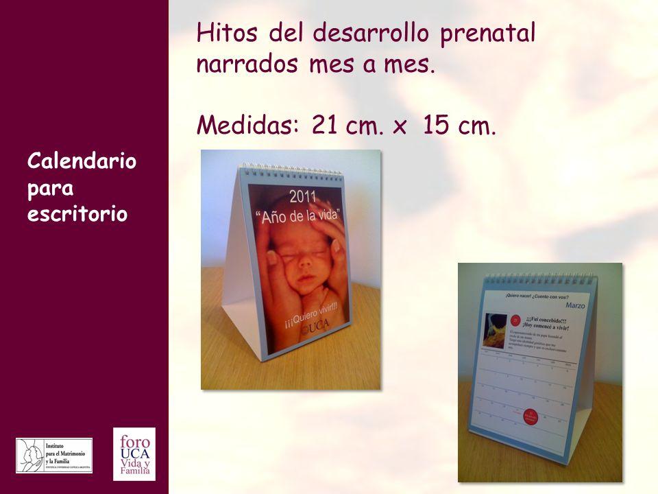 Hitos del desarrollo prenatal narrados mes a mes.