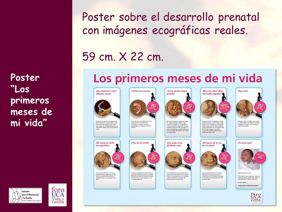 Poster sobre el desarrollo prenatal con imágenes ecográficas reales.
