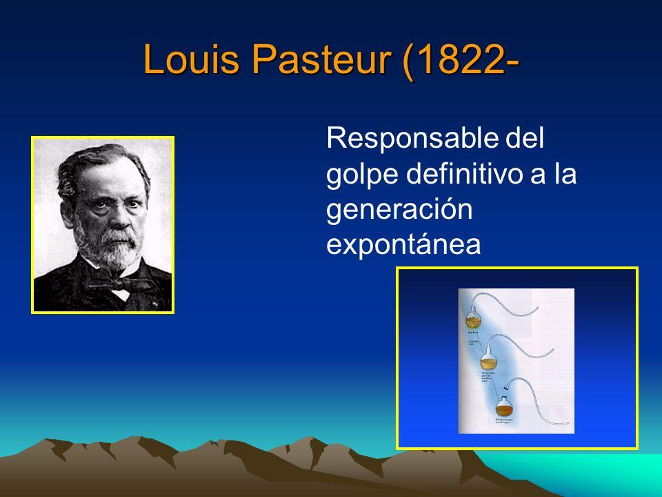 Louis Pasteur (1822- Responsable del golpe definitivo a la generación expontánea.